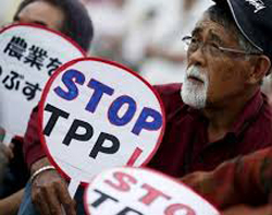 Man with Stop TPP sign