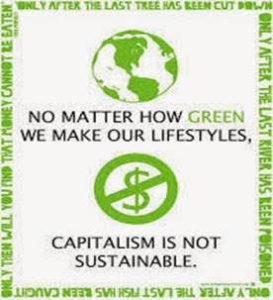 capitalism-non-sustainable