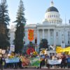 Sunflower Alliance General Assembly: Sacramento Report, March 5
