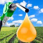 Biofuel, A False Solution — Resources