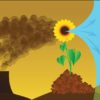 Special Sunflower Alliance Zoom on Drilling and Decommissioning, May 24