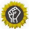 Sunflower Alliance Meeting, Jan 28
