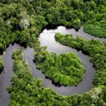 Panel on Carbon Trading and Carbon Offsets, March 15